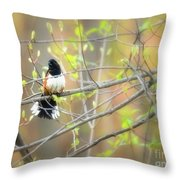 Male Eastern Throw Pillow