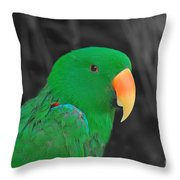 Male Eclectus Throw Pillow