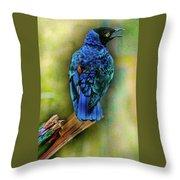 Male Fairy Bluebird Throw Pillow