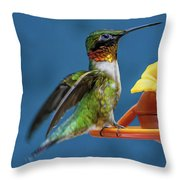 Male Hummingbird Spreading Wings Throw Pillow