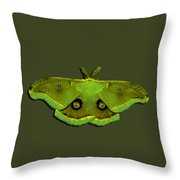 Male Moth Green And Yellow .png Throw Pillow