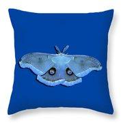 Male Moth Light Blue .png Throw Pillow