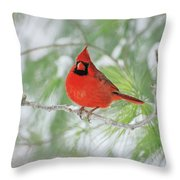 Male Northern Cardinal In Winter Throw Pillow