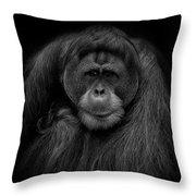 Male Orangutan Black And White Portrait Throw Pillow