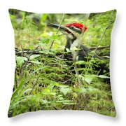 Male Pileated Woodpecker On The Ground No. 2 Throw Pillow