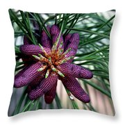 Male Ponderosa Pine Cones Throw Pillow