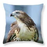 Male Red Tail Throw Pillow
