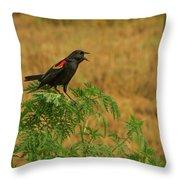 Male Red-winged Blackbird Singing Throw Pillow