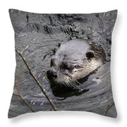 Male River Otter Throw Pillow