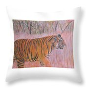 Adult Male Tiger Of India Striding At Sunset  Throw Pillow