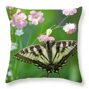 Male Tiger Swallowtail 5416 Throw Pillow