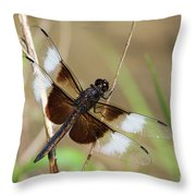 Male Widow Skimmer Dragonfly #3 Throw Pillow