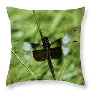 Male Widow Skimmer Dragonfly #4 Throw Pillow