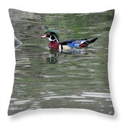 Drake Wood Duck On Pond Throw Pillow