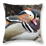 Male Wood-duck Throw Pillow