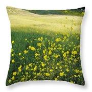 Malibu Creek Wildflowers Throw Pillow
