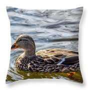 Mallard 2 Throw Pillow