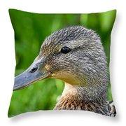 Mallard Duck Female Throw Pillow
