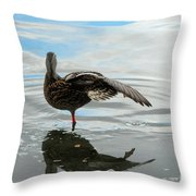 Mallard Duck Hen Stretching Wing Throw Pillow