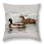 Mallard Duo Throw Pillow