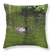 Mallard Family Throw Pillow