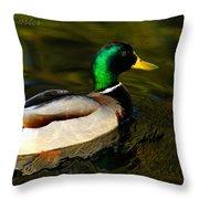 Mallard Green Throw Pillow