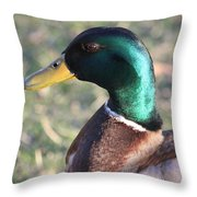 Mallard Green Throw Pillow