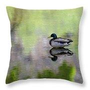 Mallard In Mountain Water Throw Pillow