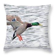 Mallard Landing II Throw Pillow