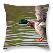 Mallard Landing Throw Pillow