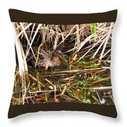 Mallard Mama With Duckling Throw Pillow