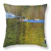 Mallard Splash Landing Throw Pillow