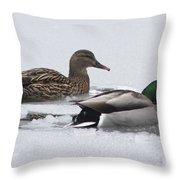 Mallards Breaking Ice Throw Pillow