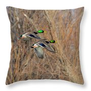 Mallard's In Flight Throw Pillow