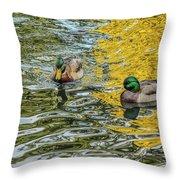 Mallards On Golden Pond 3 Throw Pillow