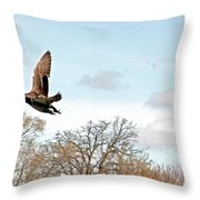 Mallard's Perspective Throw Pillow