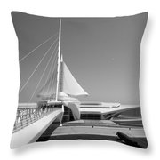 Mam Spreading Wings B-w Throw Pillow