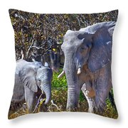 Mama And Baby Elephant Throw Pillow