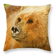 Mama Bear Close Up Throw Pillow