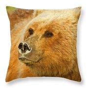 Mama Bear Close Up Throw Pillow