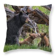 Mama Black Bear With Cinnamon Cubs Throw Pillow