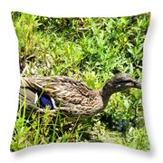Mama Duck On Guard Throw Pillow