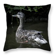 Mama Duck Throw Pillow