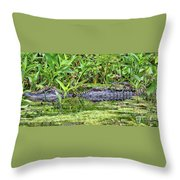Mama Gator With Babies Throw Pillow