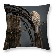Mama House Finch Throw Pillow