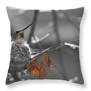 Mama Hummingbird Throw Pillow