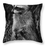 Mama Raccoon Throw Pillow