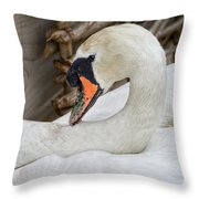 Mama Swan At Abbotsbury Throw Pillow