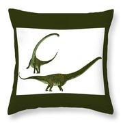 Mamenchisaurus Hochuanensis Throw Pillow