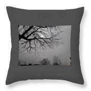 Mamma Crow Throw Pillow